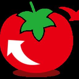 大番茄一键重装系统v2.0.3.213 官方最新版