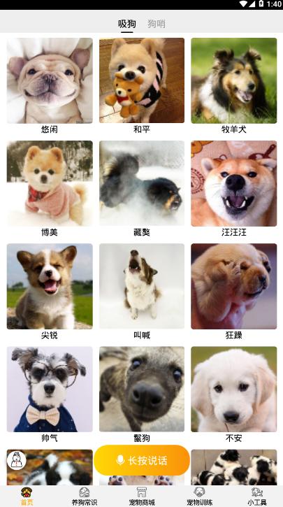 跑狗翻译软件截图0