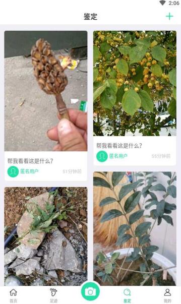 掌上植物网app截图1