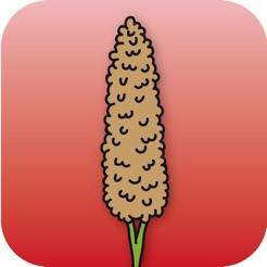 红高粱兼职app1.0 最新版
