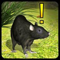 萌鼠模拟器游戏1.0.2 安卓手机版