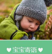 宝宝相册设计模板ppt