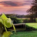 葡萄酒行业销售技巧培训ppt模板