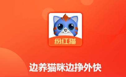 纷红猫养猫咪分红软件