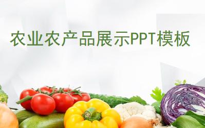 果蔬背景农产品介绍ppt
