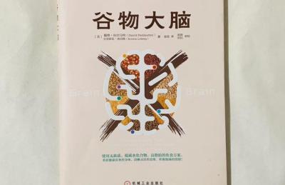谷物大脑pdf