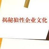 我在华为的日子pdf高清电子版免费下载