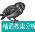 精通搜索分析pdf中文版