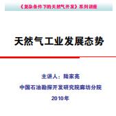 天然气工业发展态势pdf免费下载