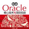 精通Oracle核心技�g�c�目����pdf完整版