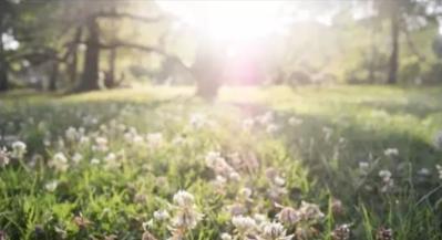 如何用泼辣修图让你的照片阳光灿烂