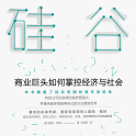 硅谷帝国电子书下载PDF高清免费版