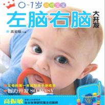 0到1岁聪明宝宝左脑右脑大开发pdf