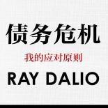 债务危机中文版pdf
