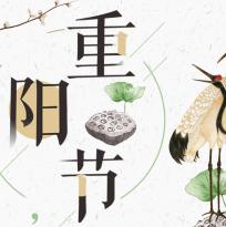 中国风重阳节活动庆典PPT模板