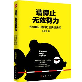 请停止无效的努力孙圈圈PDF电子书下载