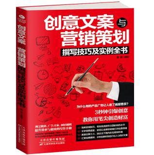 创意文案与营销策划撰写技巧及实例全书PDF电子书下载读后感