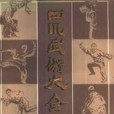 四川武术大全PDF电子书下载带目录完整高清版