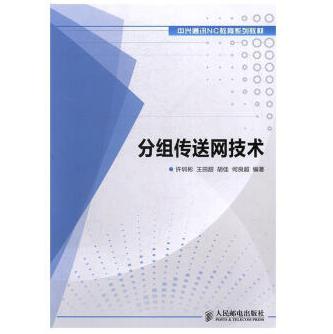 分组传送网技术PDF电子书下载免费版