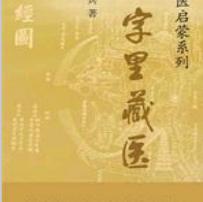 徐文兵字里藏医pdf