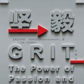坚毅:释放激情与坚持的力量PDF
