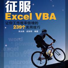 征服ExcelVBApdf