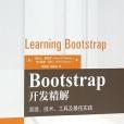 Bootstrap开发精解pdf