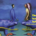语言本能:人类语言进化的奥秘PDF电子书