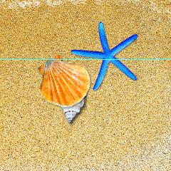 沙滩海水照片psd素材