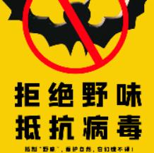 拒绝野味抵抗病毒海报设计psd