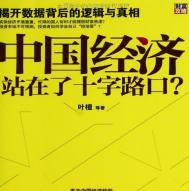 中国经济站在了十字路口pdf下载