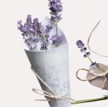 感恩教师节清新花朵PPT模板