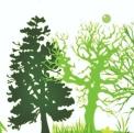 绿色唯美3.12植树节活动策划PPT模板