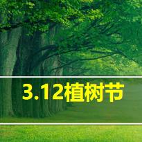 312植树节主题班会PPT下载