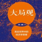 大局观:真实世界中的经济学思维pdf下载