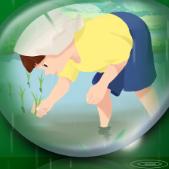 绿色主题谷雨节气海报PSD