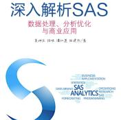 深入解析SAS电子书