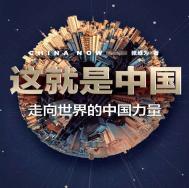 这就是中国pdf下载