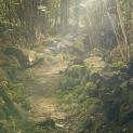 淡绿色爱护树木保护森林PPT模板