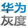 华为灰度管理法pdf