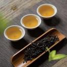 茶学与茶科学电子书下载