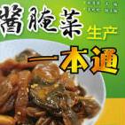 酱腌菜生产一本通PDF电子书下载