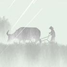2020谷雨节气海报设计psd素材