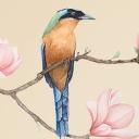 水彩花鸟复古文艺中国风PPT模板