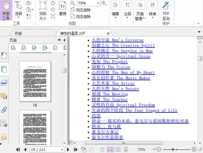 神性的温柔PDF截图0