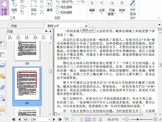 剩饭PDF截图1