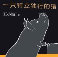 王小波作品大全集pdf
