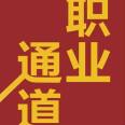 职业通道:人生规划与事业进阶指南PDF电子书