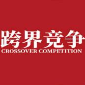 跨界竞争:看不见的对手,看得见的手PDF电子书