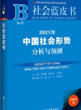 社会蓝皮书:2021年中国社会形势分析与预测pdf